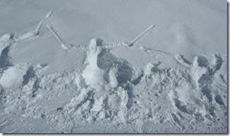 1.29.2012 ski people 1